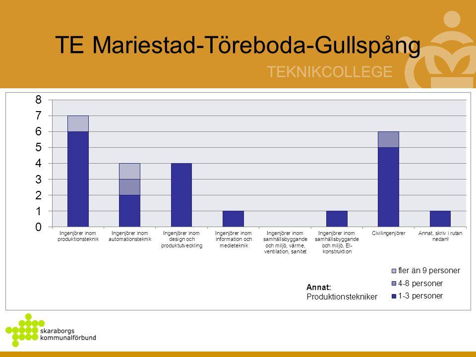 TE Mariestad-Töreboda-Gullspång Annat: Produktionstekniker