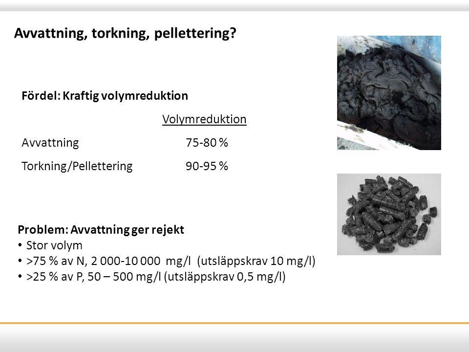 Avvattning, torkning, pellettering? Fördel: Kraftig volymreduktion Volymreduktion Avvattning75-80 % Torkning/Pellettering90-95 % Problem: Avvattning g