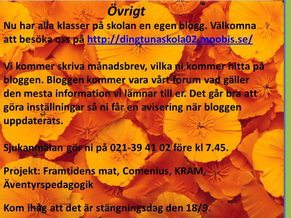 Nu har alla klasser på skolan en egen blogg. Välkomna att besöka oss på http://dingtunaskola02.moobis.se/http://dingtunaskola02.moobis.se/ Vi kommer s