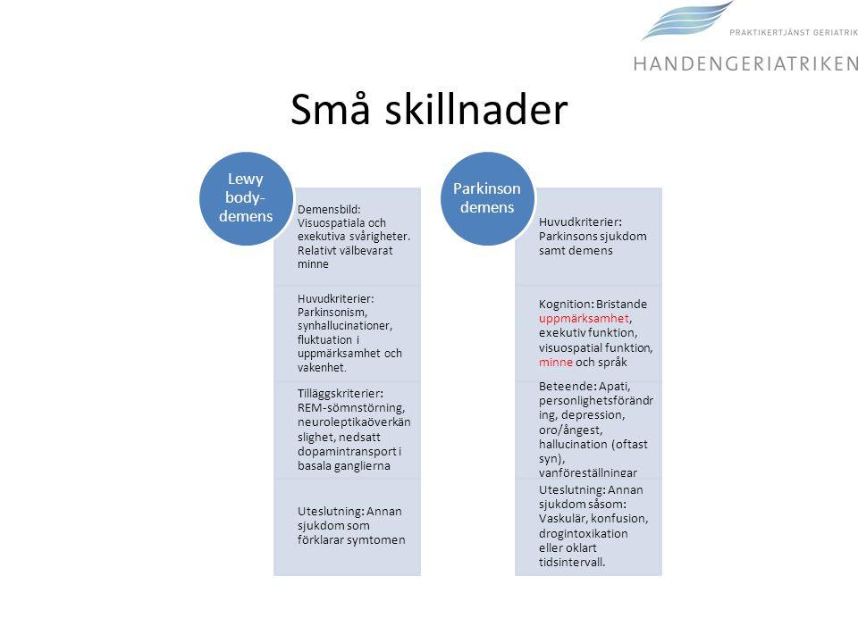 Små skillnader Demensbild: Visuospatiala och exekutiva svårigheter. Relativt välbevarat minne Huvudkriterier: Parkinsonism, synhallucinationer, fluktu