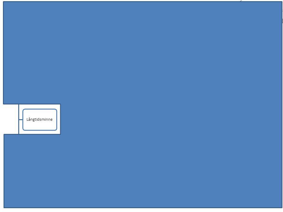 Kognition Minne Långtidsminne Korttidsminne/ Arbetsminne Språk SpråkproduktionSpråkförståelse Visuospatialt KonstruktionRumsuppfattning Snabbhet / Upp