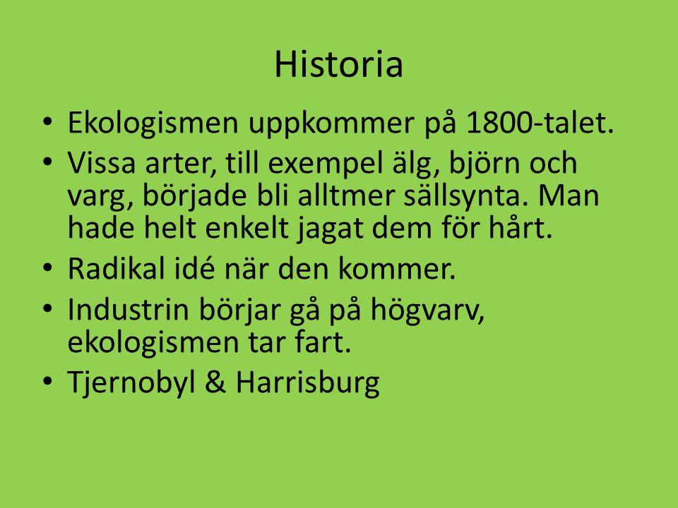 Historia • Ekologismen uppkommer på 1800-talet. • Vissa arter, till exempel älg, björn och varg, började bli alltmer sällsynta. Man hade helt enkelt j