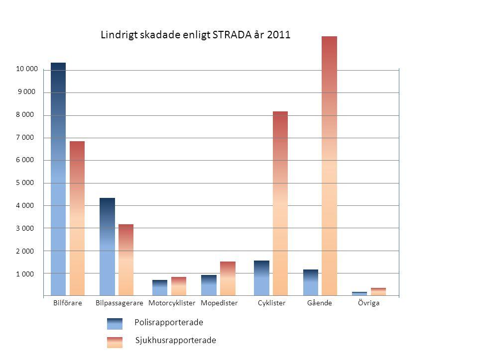 Lindrigt skadade enligt STRADA år 2011 10 000 9 000 8 000 7 000 6 000 5 000 4 000 3 000 2 000 1 000 Polisrapporterade Sjukhusrapporterade Bilförare Bi