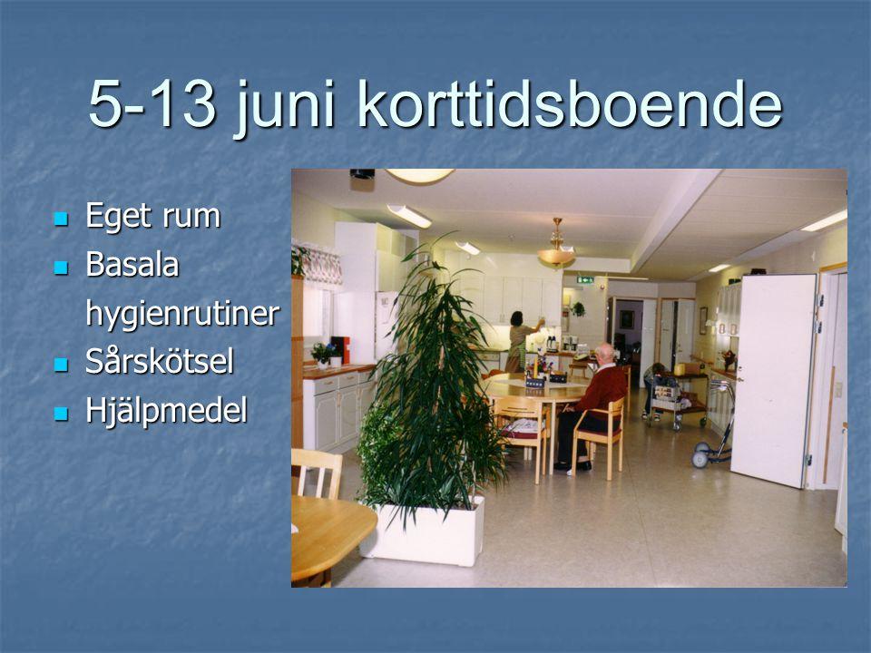 5-13 juni korttidsboende  Eget rum  Basala hygienrutiner  Sårskötsel  Hjälpmedel