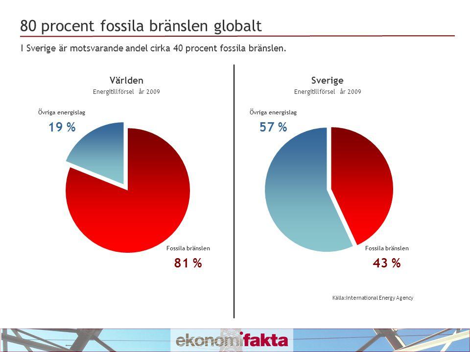 Förbränning av avfall och förnyelsebara bränslen 10,1 % Geotermisk värme, sol, vind, etc.
