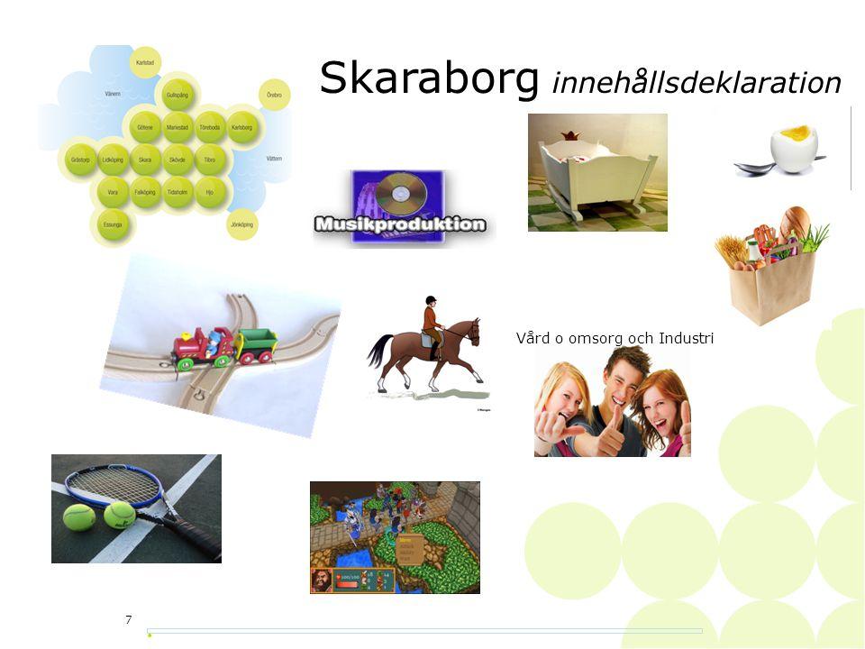 Skaraborgs utmaningar • 8