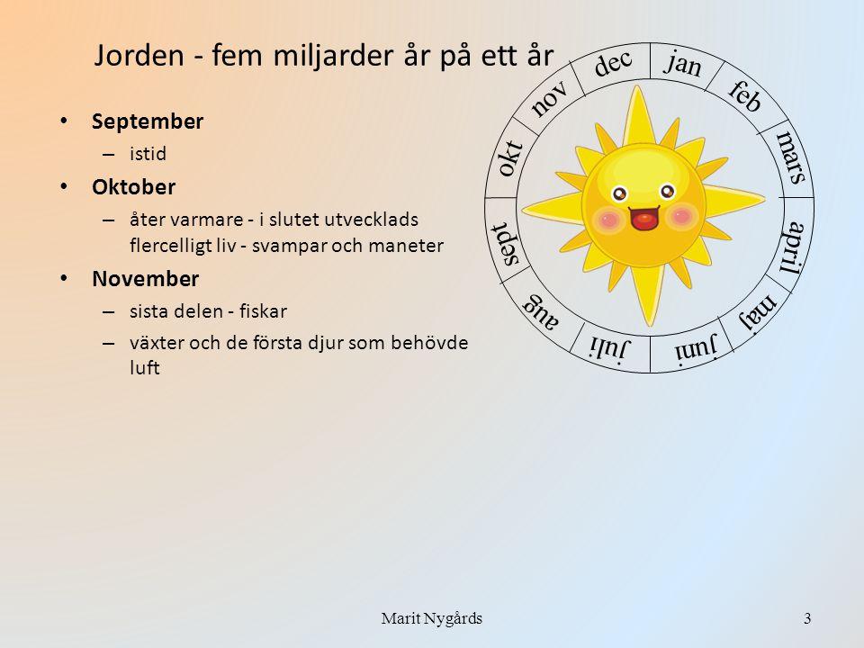 • September – istid • Oktober – åter varmare - i slutet utvecklads flercelligt liv - svampar och maneter • November – sista delen - fiskar – växter oc