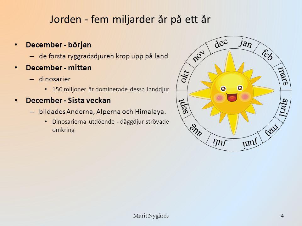 • December - den 31:a - på morgonen – Människoliknande varelser • December - 31:a mellan kl.