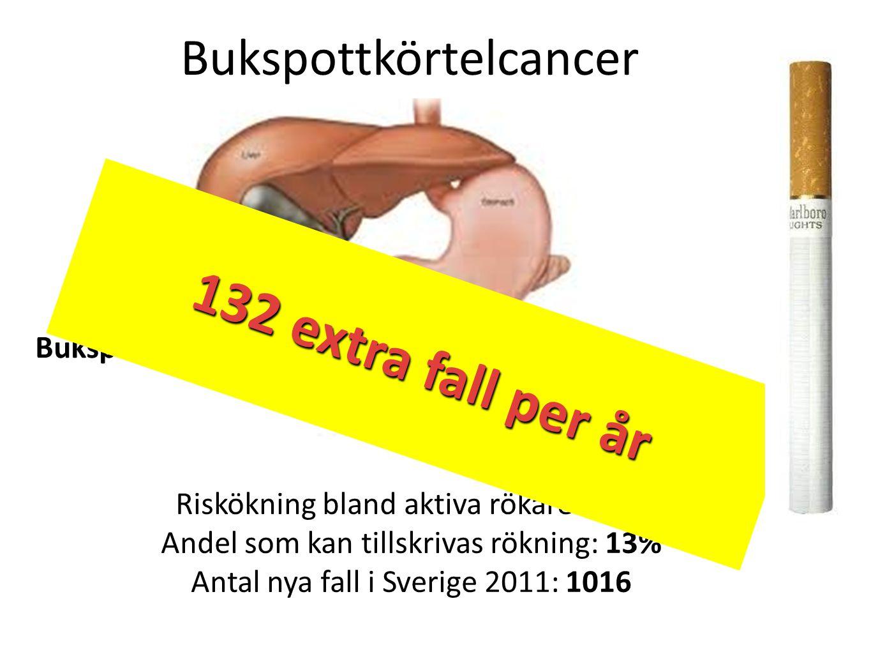 Riskökning bland aktiva rökare: 74% Andel som kan tillskrivas rökning: 13% Antal nya fall i Sverige 2011: 1016 Bukspottkörtelcancer Bukspottkörteln 13
