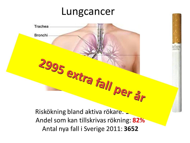 Riskökning bland aktiva rökare: 1260% Andel som kan tillskrivas rökning: 82% Antal nya fall i Sverige 2011: 3652 Lungcancer 2995 extra fall per år