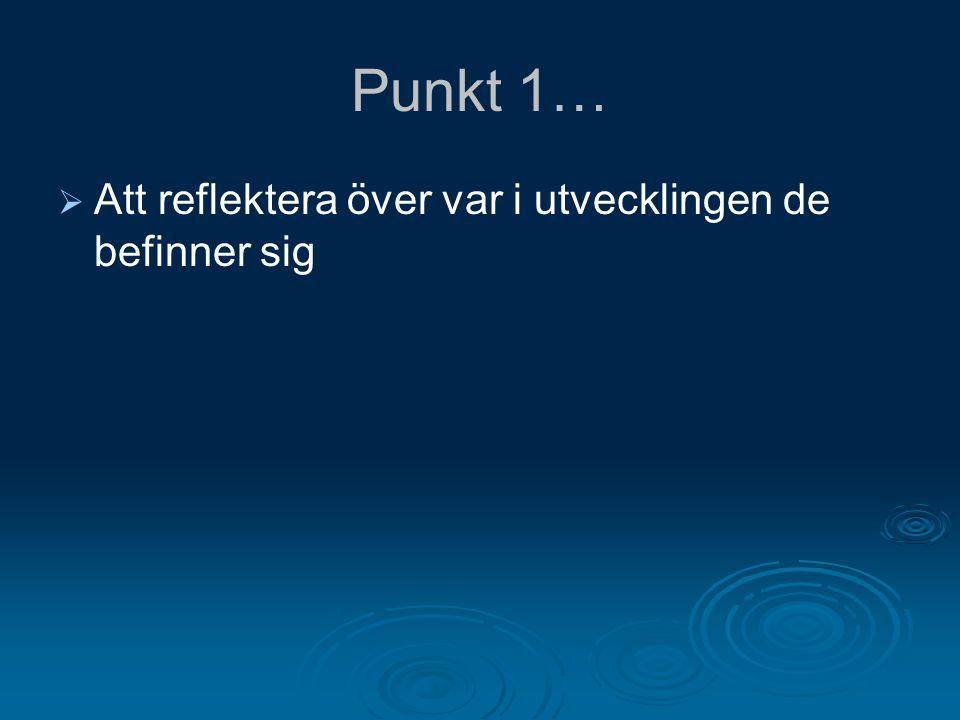 Bakgrund till ungdomars rätt till sekretess i Sverige  Föräldrabalken  Hälso- och sjukvårdslagen  Sekretesslagen  FN:s barnkonvention  Många lagar ger betydande rättigheter