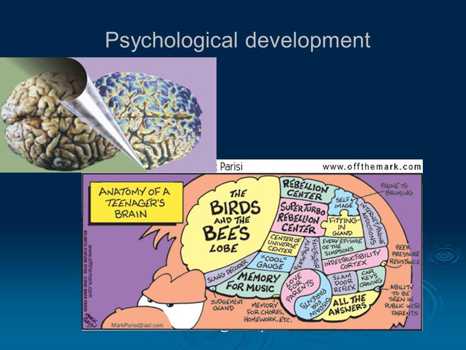kristina@bob-kelly.se Psychological development
