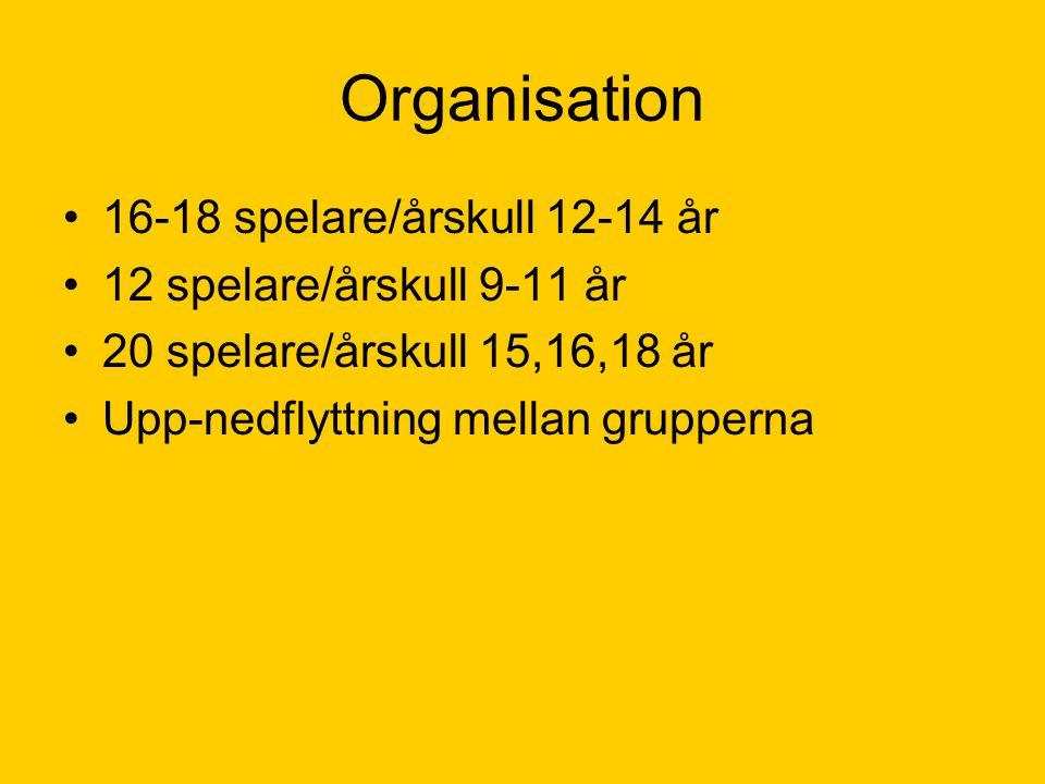 Organisation •16-18 spelare/årskull 12-14 år •12 spelare/årskull 9-11 år •20 spelare/årskull 15,16,18 år •Upp-nedflyttning mellan grupperna