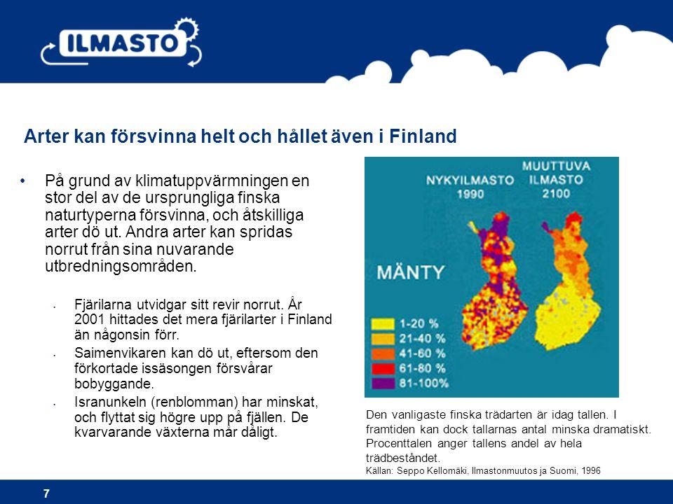 Arter kan försvinna helt och hållet även i Finland 7 Den vanligaste finska trädarten är idag tallen. I framtiden kan dock tallarnas antal minska drama