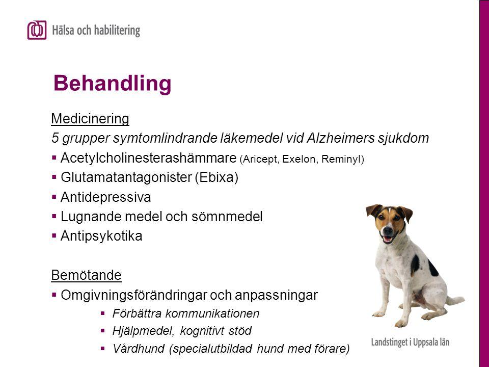 Behandling Medicinering 5 grupper symtomlindrande läkemedel vid Alzheimers sjukdom  Acetylcholinesterashämmare (Aricept, Exelon, Reminyl)  Glutamata