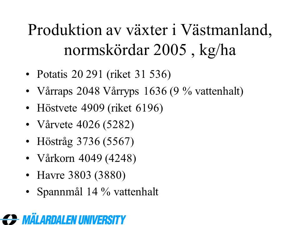 Produktion av växter i Västmanland, normskördar 2005, kg/ha •Potatis 20 291 (riket 31 536) •Vårraps 2048 Vårryps 1636 (9 % vattenhalt) •Höstvete 4909