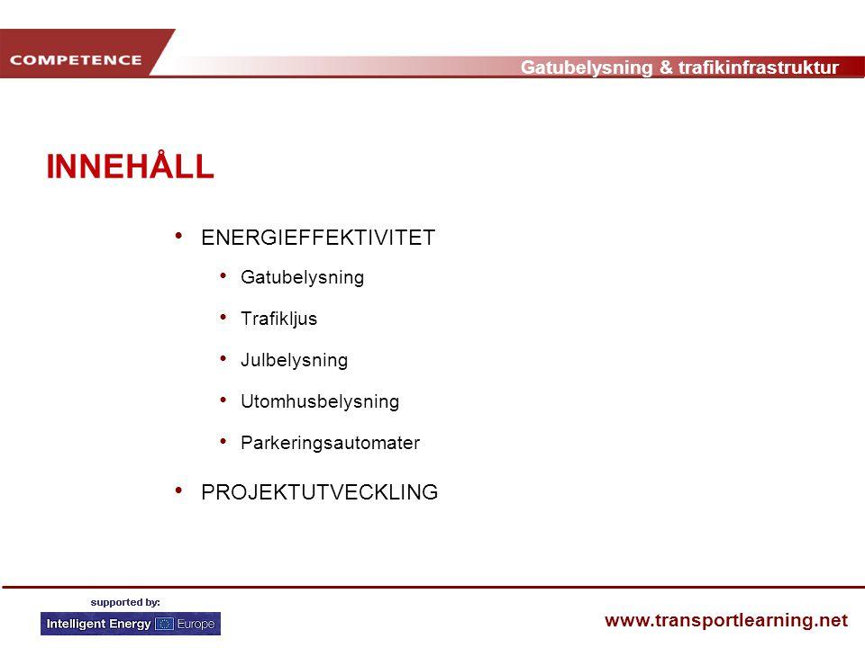 Gatubelysning & trafikinfrastruktur www.transportlearning.net GENOMFÖRANDE • Kontroll av elräkning och underhållskostnader • Undersökning av befintlig utrustning • Finansiell modell • Presentation av analys till kommunen • Utveckling av ett integrerat långsiktigt koncept • Projektplanering och entreprenadanbud • Bevakning av besparingar • Dokumentering