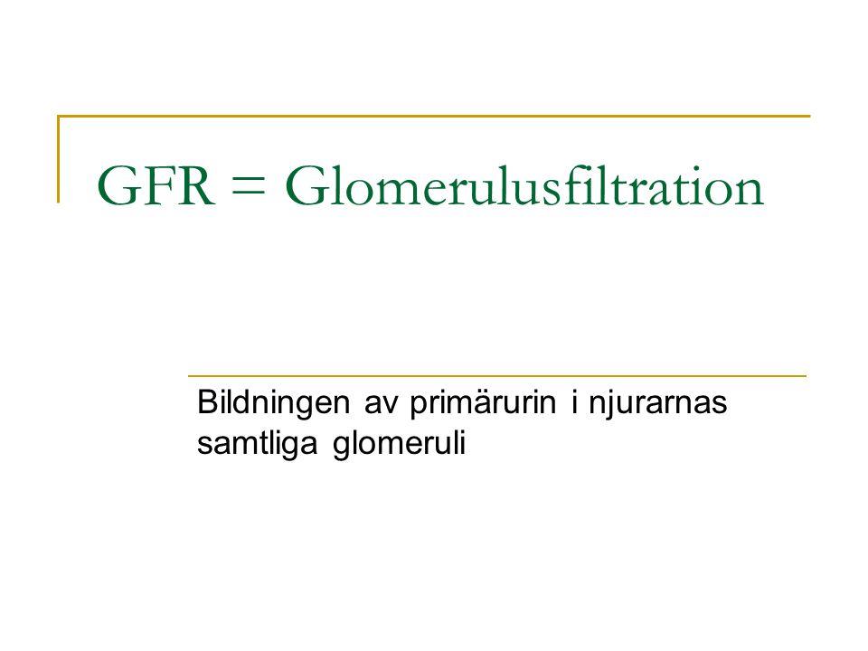 GFR = Glomerulusfiltration Bildningen av primärurin i njurarnas samtliga glomeruli