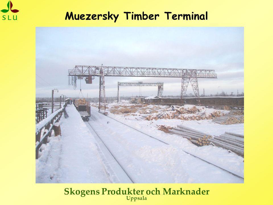 Skogens Produkter och Marknader Uppsala Ryska avverkningsföretag – Muezersky (skogsbruk)  Avverkar 727 000 m 3 per år slutavverkning (och 270 000 m 3 per år i gallring ???)  Fram till slutet av 2005 endast helstam, modern amerikansk teknik + gammal rysk.
