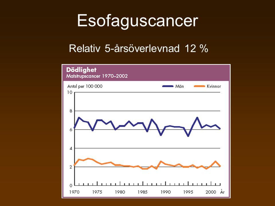 Esofaguscancer Relativ 5-årsöverlevnad 12 %