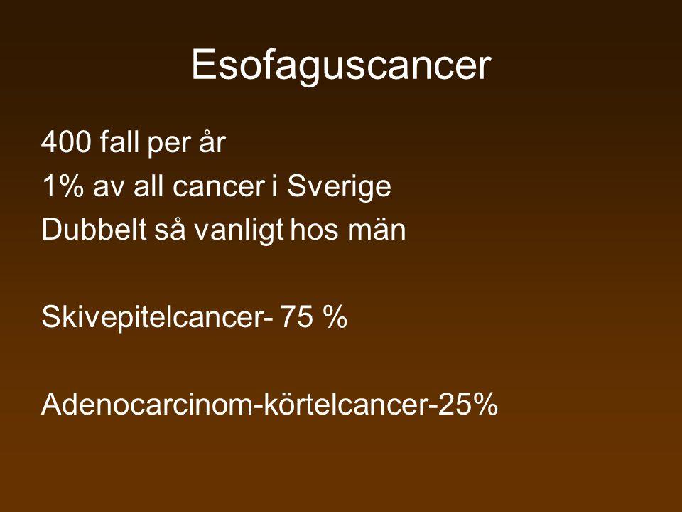 400 fall per år 1% av all cancer i Sverige Dubbelt så vanligt hos män Skivepitelcancer- 75 % Adenocarcinom-körtelcancer-25% Esofaguscancer