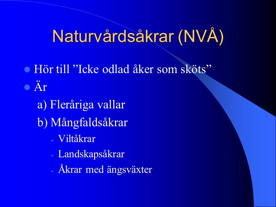 """Naturvårdsåkrar (NVÅ)  Hör till """"Icke odlad åker som sköts""""  Är a) Fleråriga vallar b) Mångfaldsåkrar - Viltåkrar - Landskapsåkrar - Åkrar med ängsv"""