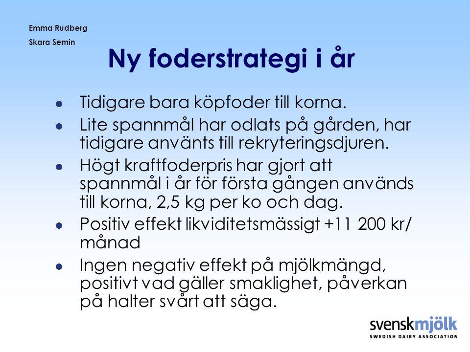 Emma Rudberg Skara Semin Ny foderstrategi i år  Tidigare bara köpfoder till korna.  Lite spannmål har odlats på gården, har tidigare använts till re