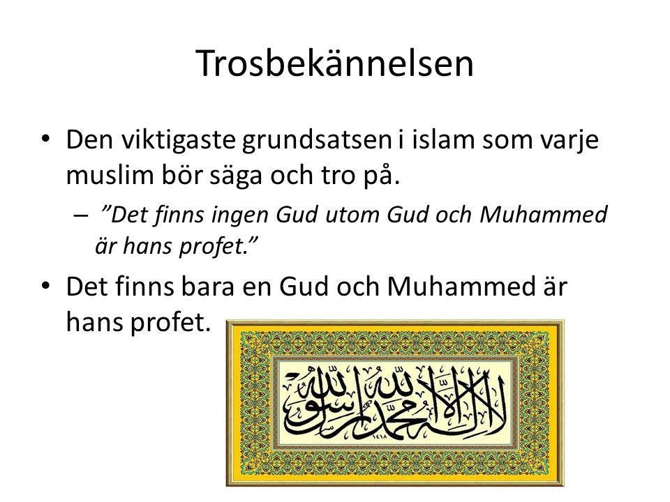 """Trosbekännelsen • Den viktigaste grundsatsen i islam som varje muslim bör säga och tro på. – """"Det finns ingen Gud utom Gud och Muhammed är hans profet"""