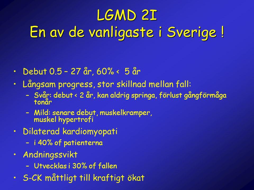 LGMD 2I En av de vanligaste i Sverige ! •Debut 0.5 – 27 år, 60% < 5 år •Långsam progress, stor skillnad mellan fall: –Svår: debut < 2 år, kan aldrig s