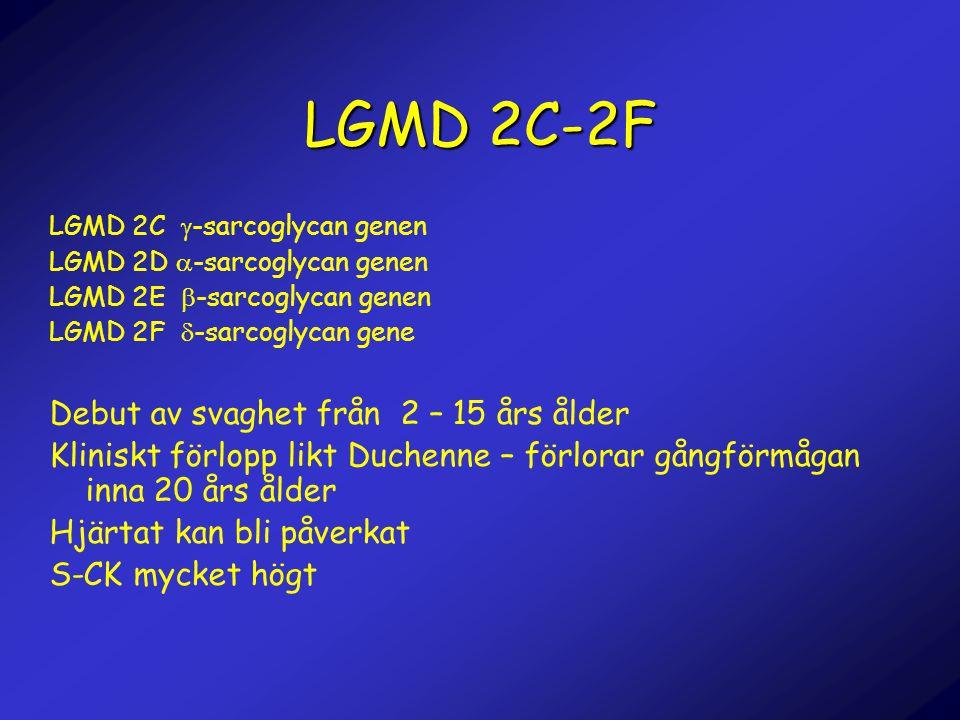 LGMD 2C-2F LGMD 2C  -sarcoglycan genen LGMD 2D  -sarcoglycan genen LGMD 2E  -sarcoglycan genen LGMD 2F  -sarcoglycan gene Debut av svaghet från 2