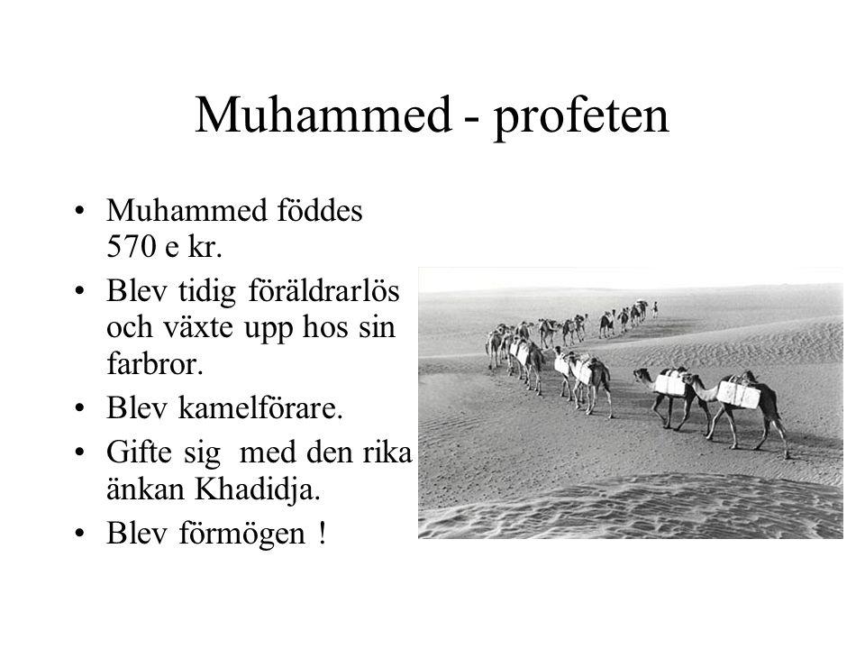 Muhammed - profeten •Muhammed föddes 570 e kr. •Blev tidig föräldrarlös och växte upp hos sin farbror. •Blev kamelförare. •Gifte sig med den rika änka