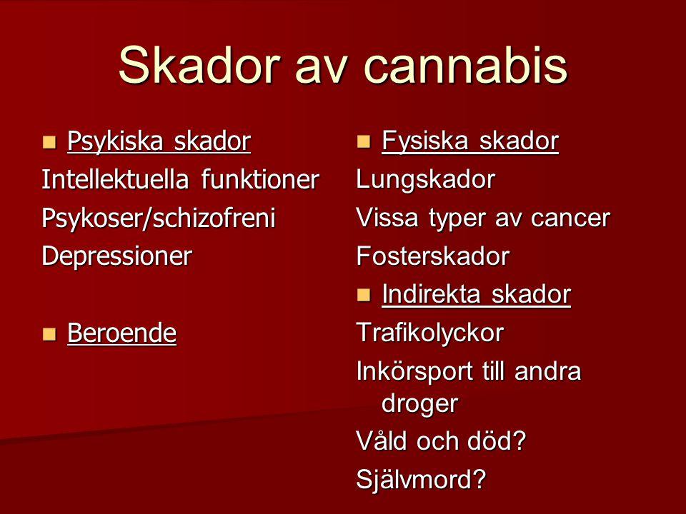 Skador av cannabis  Psykiska skador Intellektuella funktioner Psykoser/schizofreniDepressioner  Beroende  Fysiska skador Lungskador Vissa typer av