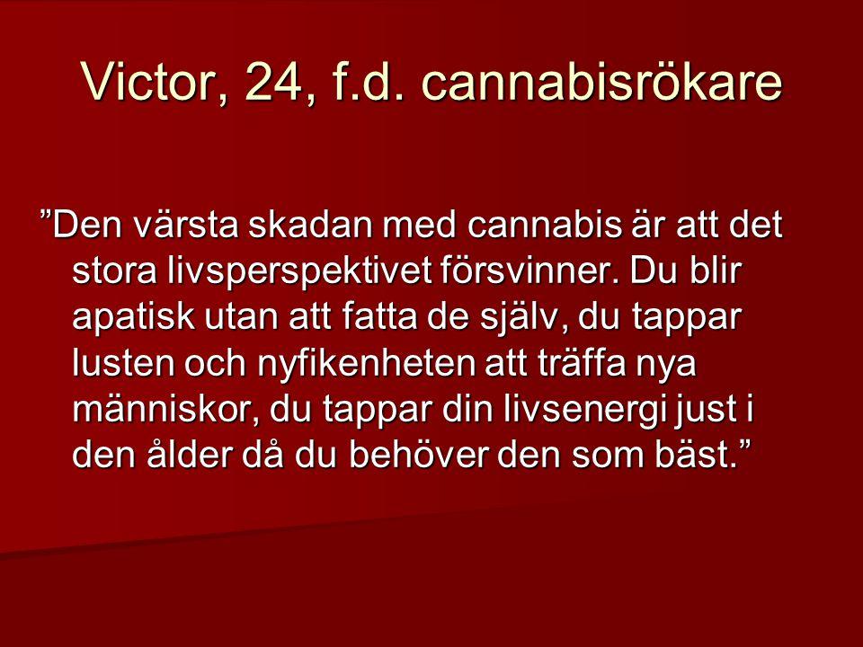 """Victor, 24, f.d. cannabisrökare """"Den värsta skadan med cannabis är att det stora livsperspektivet försvinner. Du blir apatisk utan att fatta de själv,"""