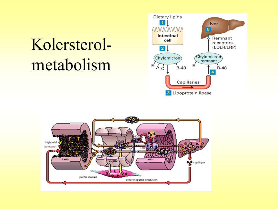 Bedömning av lipidvärden Indikatorer för ökad risk Triglycerider >2,0 mmol/L HDL kolesterol <1,0 mmol/L Önskvärd nivå Kolesterol <5,0 mmol/L * LDL kolesterol <3,0 mmol/L * •I åldersgruppen 30-50 år har 70% av alla kvinnor och män kolesterolvärde över 5mM •I åldersgruppen 50-70 år är motsvarande siffror 95 % av kvinnorna och 90 % av männen.