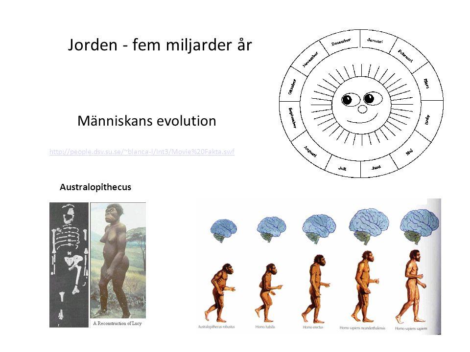 1 Jorden - fem miljarder år Människans evolution http://people.dsv.su.se/~blanca-l/Int3/Movie%20Fakta.swf Australopithecus