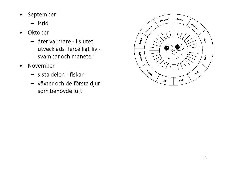 3 •September –istid •Oktober –åter varmare - i slutet utvecklads flercelligt liv - svampar och maneter •November –sista delen - fiskar –växter och de