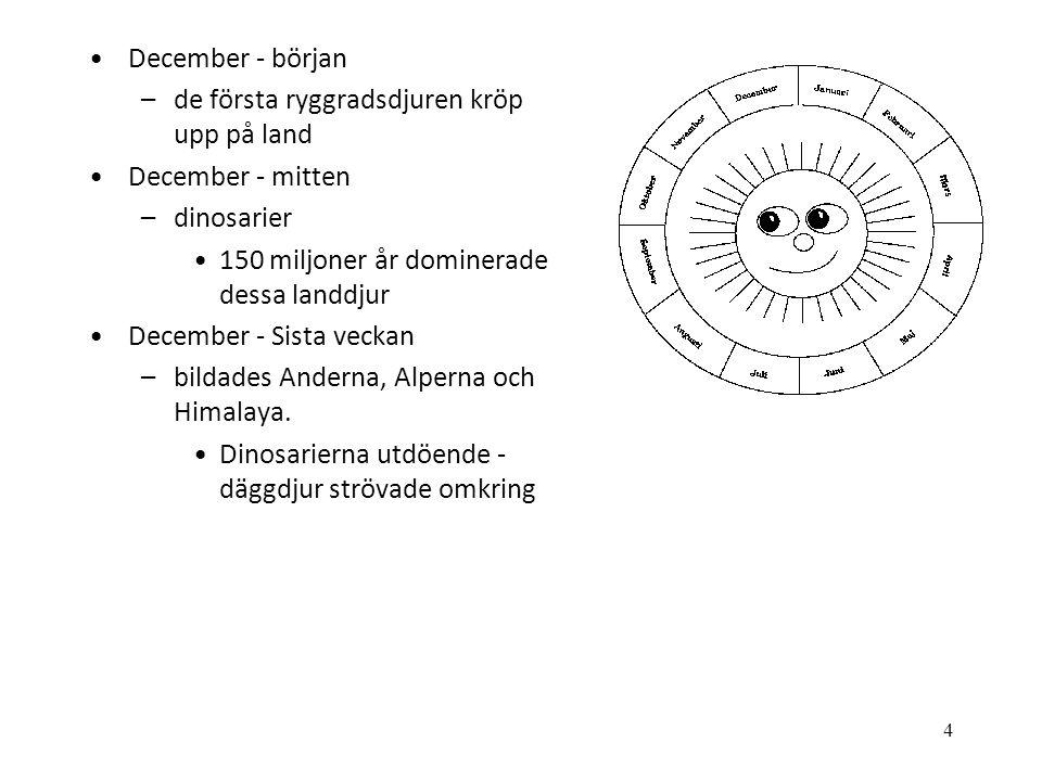 4 •December - början –de första ryggradsdjuren kröp upp på land •December - mitten –dinosarier •150 miljoner år dominerade dessa landdjur •December -