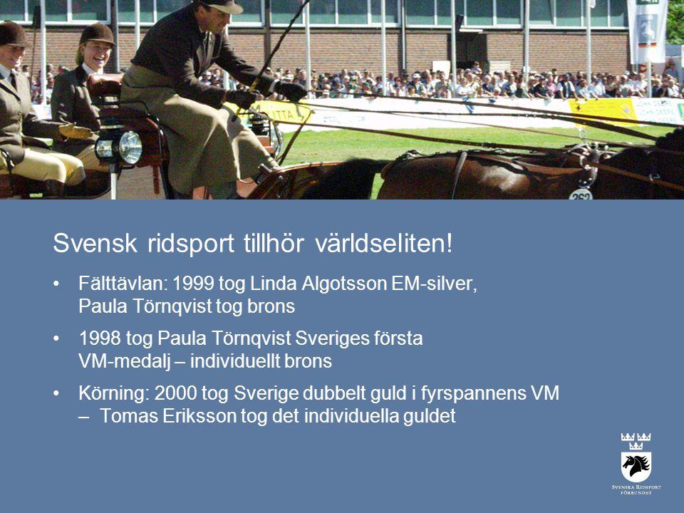 Svensk ridsport tillhör världseliten.