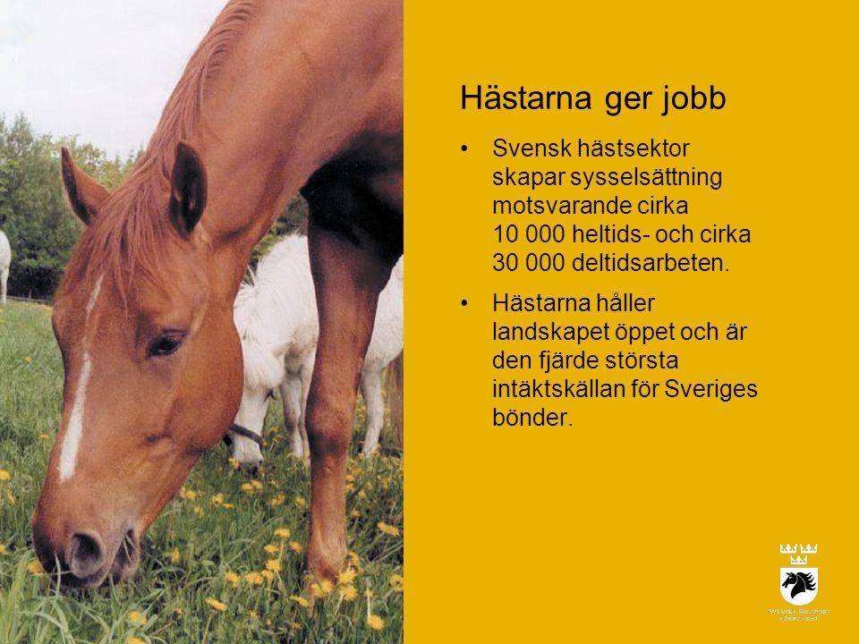 Hästarna ger jobb •Svensk hästsektor skapar sysselsättning motsvarande cirka 10 000 heltids- och cirka 30 000 deltidsarbeten.