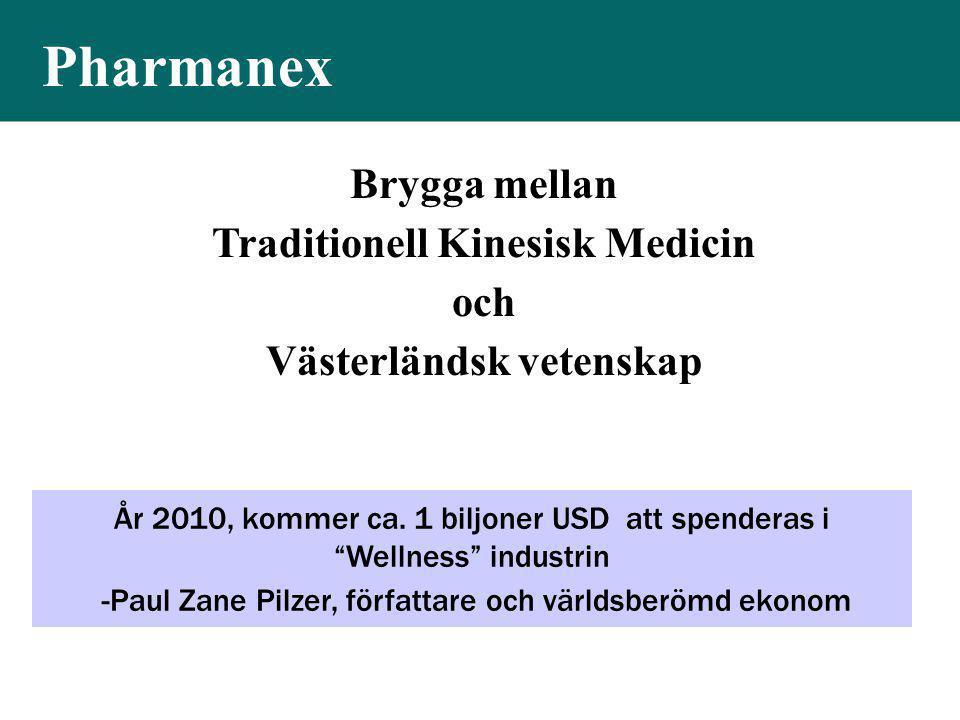 """År 2010, kommer ca. 1 biljoner USD att spenderas i """"Wellness"""" industrin -Paul Zane Pilzer, författare och världsberömd ekonom Brygga mellan Traditione"""
