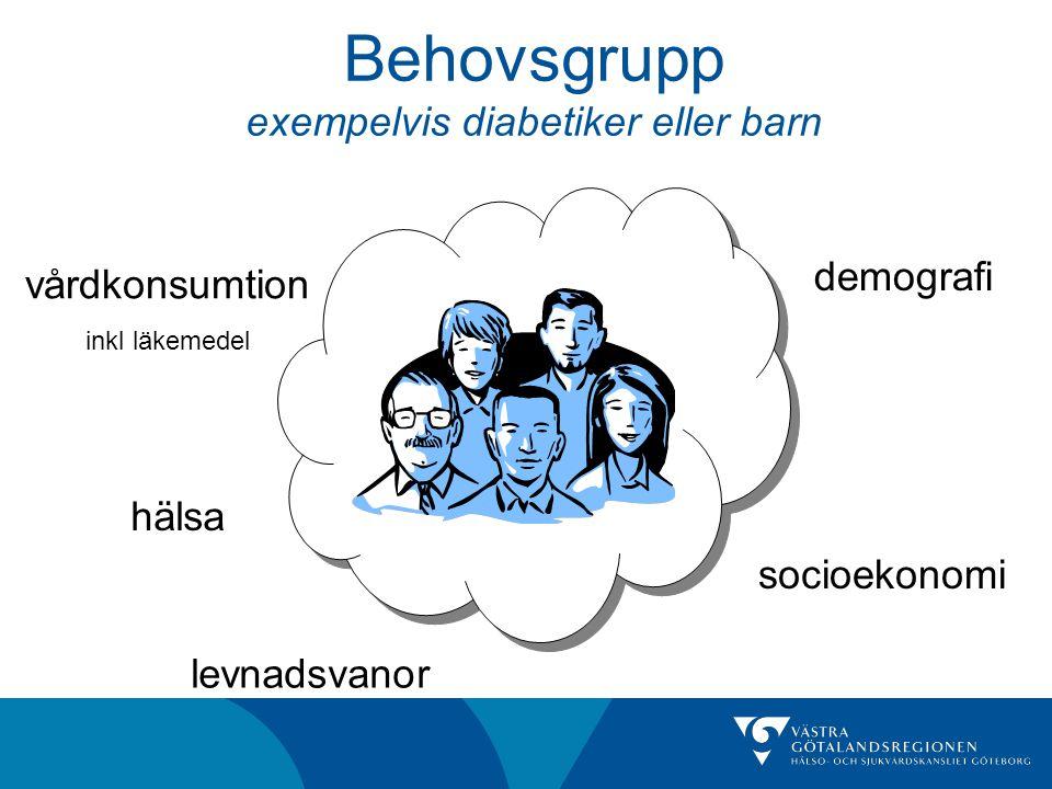 Behovsgrupp exempelvis diabetiker eller barn demografi socioekonomi levnadsvanor vårdkonsumtion inkl läkemedel hälsa