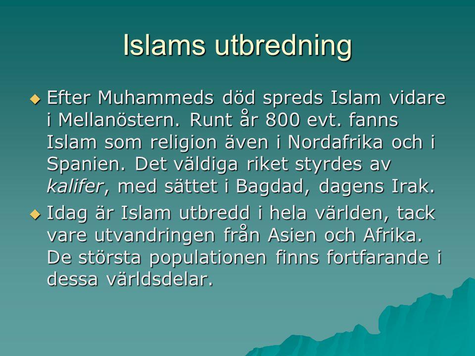 Islams utbredning  Efter Muhammeds död spreds Islam vidare i Mellanöstern. Runt år 800 evt. fanns Islam som religion även i Nordafrika och i Spanien.