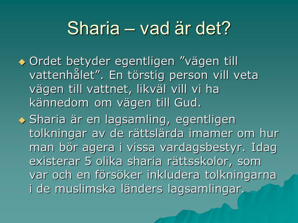 """Sharia – vad är det?  Ordet betyder egentligen """"vägen till vattenhålet"""". En törstig person vill veta vägen till vattnet, likväl vill vi ha kännedom o"""