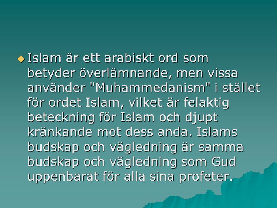  Islam är ett arabiskt ord som betyder överlämnande, men vissa använder