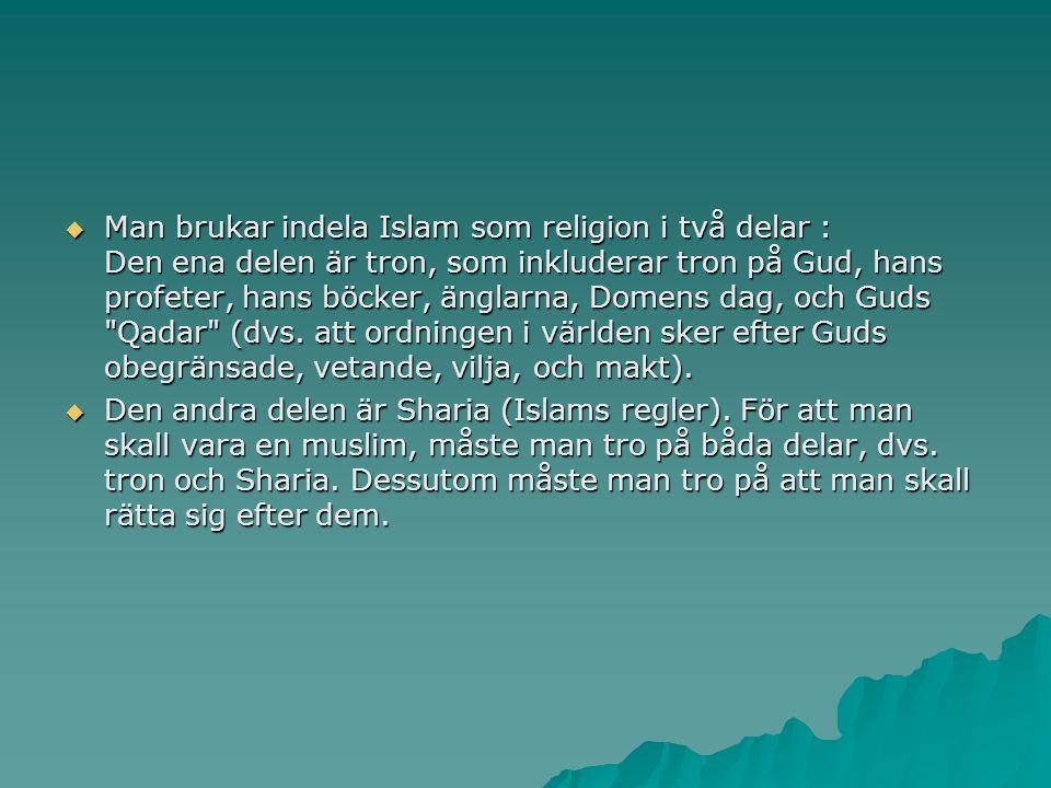 Man brukar indela Islam som religion i två delar : Den ena delen är tron, som inkluderar tron på Gud, hans profeter, hans böcker, änglarna, Domens d