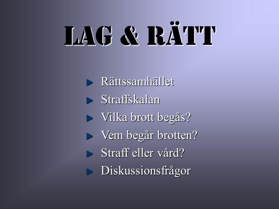 Stöld & skadegörelse Ca 25% av alla svenskar blir varje år utsatta för stöld eller skadegörelse Vilka är de vanligaste av dessa brott.