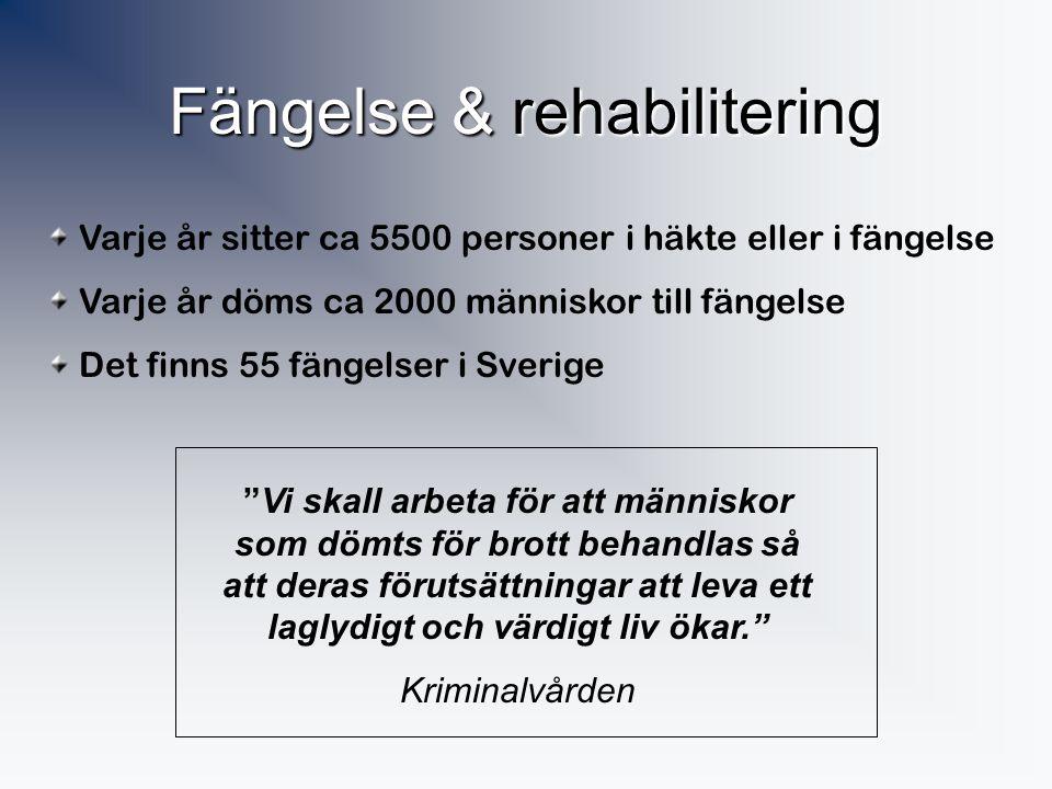 Stöld & skadegörelse Ca 25% av alla svenskar blir varje år utsatta för stöld eller skadegörelse Vilka är de vanligaste av dessa brott? • Allra vanliga