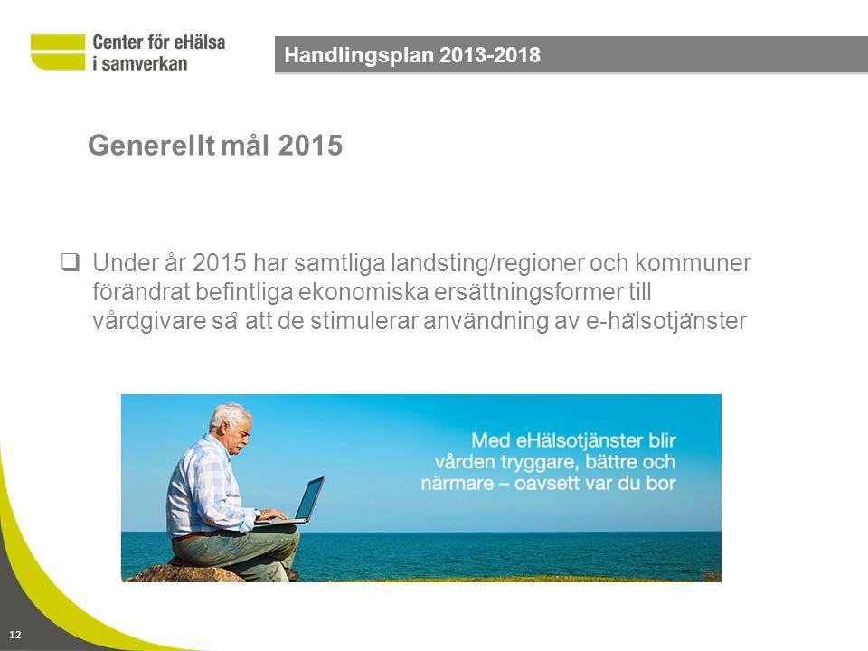 12 Handlingsplan 2013-2018  Under år 2015 har samtliga landsting/regioner och kommuner förändrat befintliga ekonomiska ersättningsformer till vårdgiv