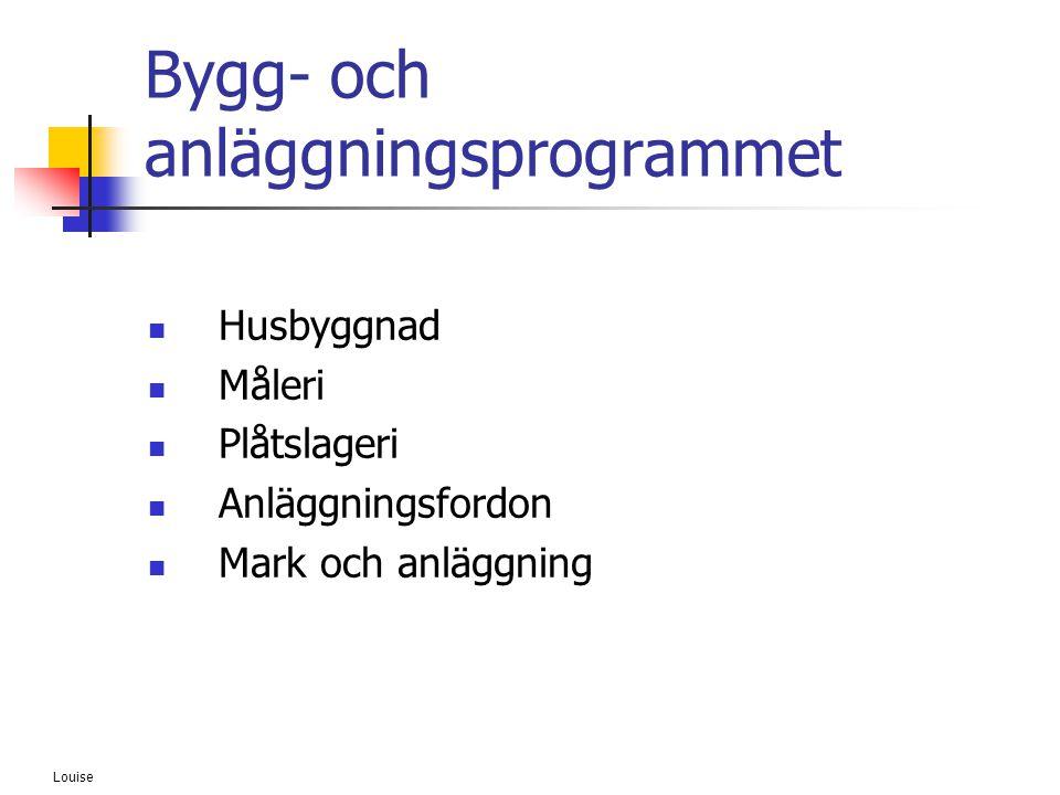 Louise Bygg- och anläggningsprogrammet  Husbyggnad  Måleri  Plåtslageri  Anläggningsfordon  Mark och anläggning