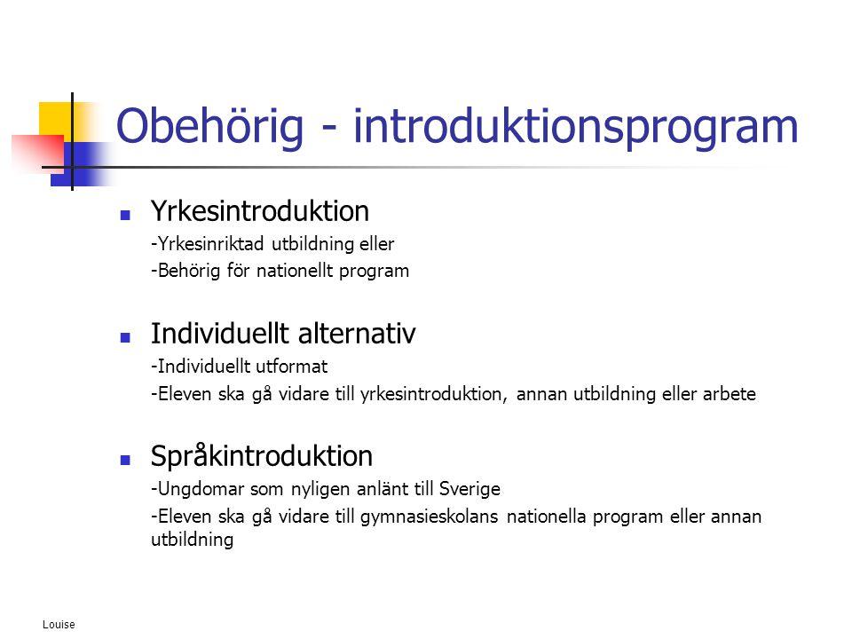 Louise Obehörig - introduktionsprogram  Yrkesintroduktion -Yrkesinriktad utbildning eller -Behörig för nationellt program  Individuellt alternativ -